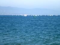 131026_SBH_sailboats.jpg