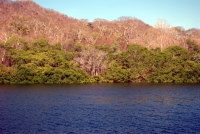 Bahia Santa Elena, Costa Rica