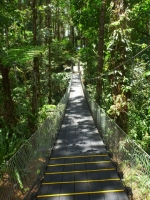 Suspension bridge on the slopes of the volcano