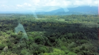 Quepos from the air