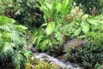 160606 Garden 33.jpg