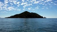 Isla de Pajaros